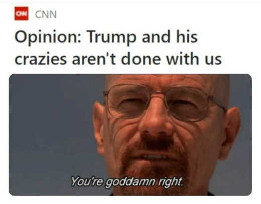 cnn trump and his crazies not down goddamn right walter white