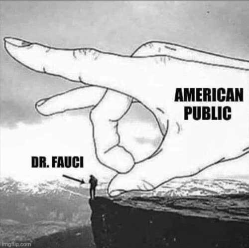 dr fauci america public cliff flick