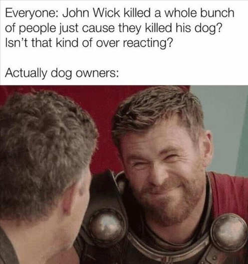 everyone john wick killed because dog not overreacting thor