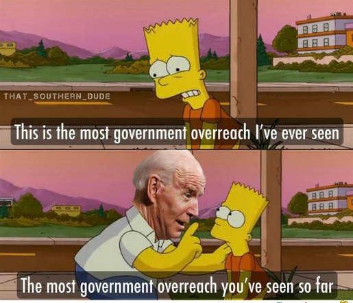 joe biden greatest overreach government so far bart homer simpson