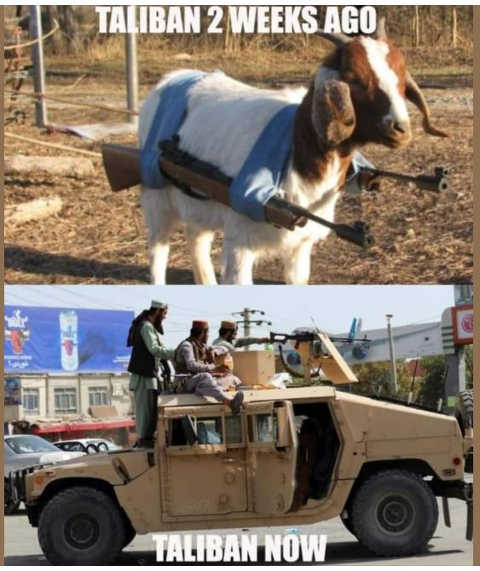 taliban 2 weeks ago goat funs now american weapons