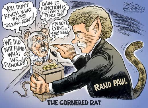 dr fauci cornered rat gain of function covid rand paul