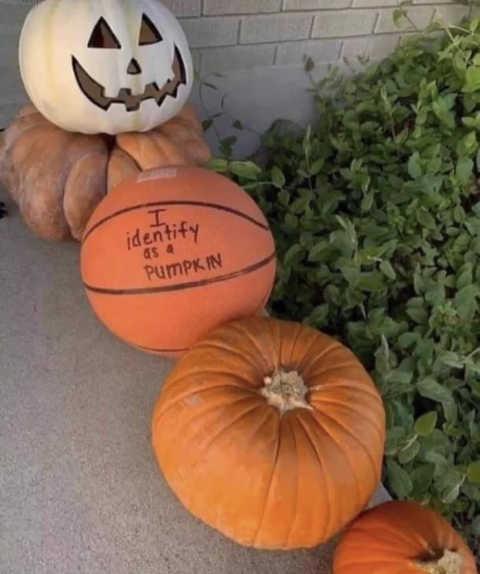 halloween basketball identify as a pumpkin