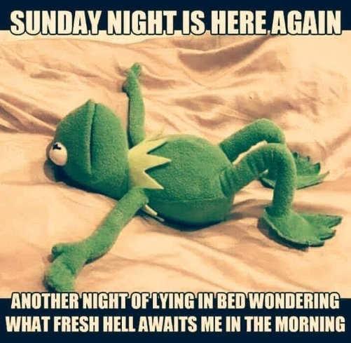 kermit sunday night wondering what fresh hell monday bed