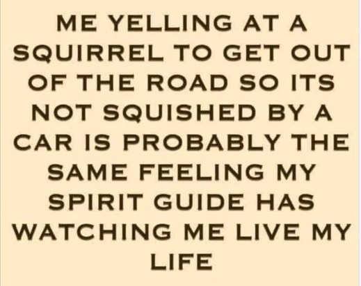 me yelling squirrel like spirtit guide watching my life