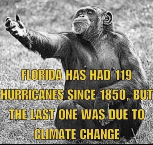 monkey hundreds hurricanes florida century last one climate change