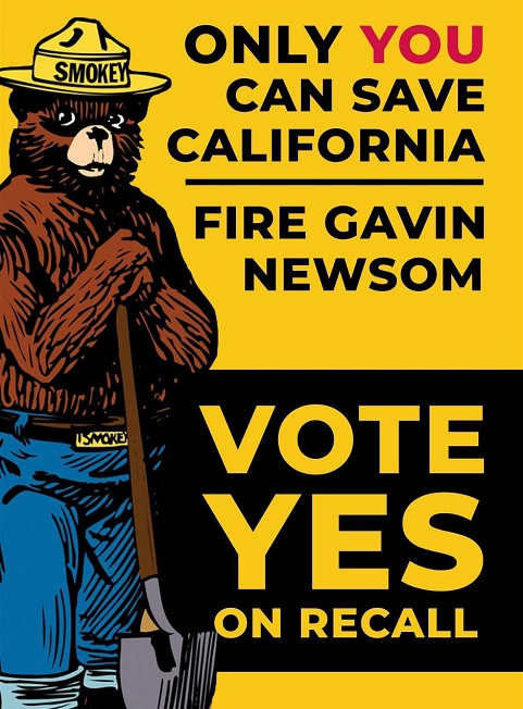 smokey bear only you save california fire gavin newsom recall