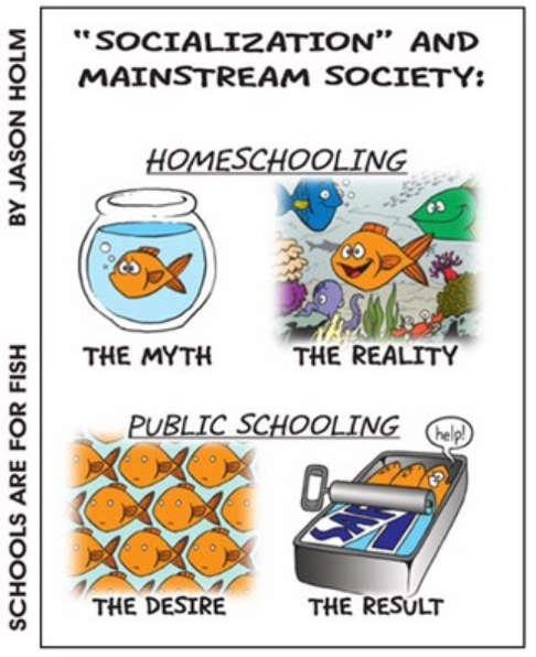 socialization homeschooling public schooling sardines