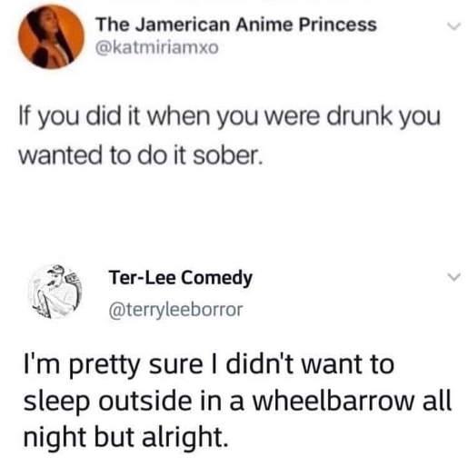 tweet things do drunk want to do sober sleeping wheelbarrel