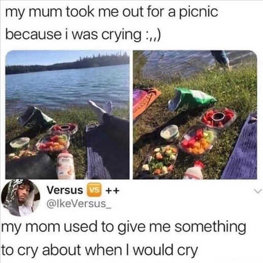 tweets picnic mom cry about