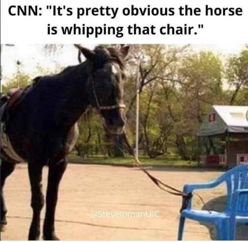 cnn horse whipping chair tied