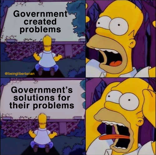 homer simpson government created problems solutions fear