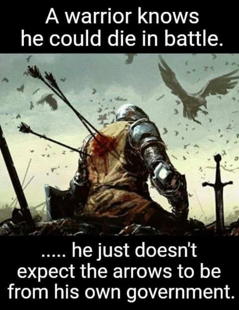 message warrior knows could die in battle doesnt expect arrows from own government