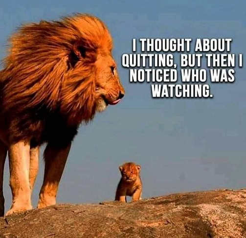 quote lion child thought about quitting noticed who watching.jpg