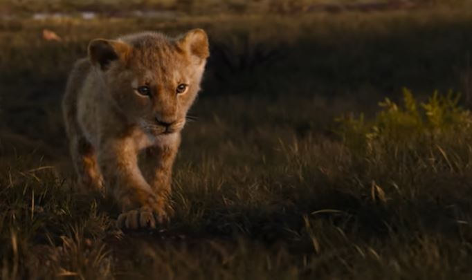 Wapo Writer Says New The Lion King Film Full Of Fascist