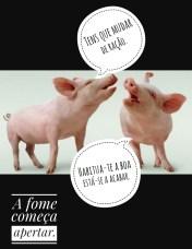 porco5