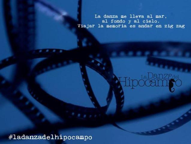 """Imagen retomada de la Página de Facebook """"La danza del hipocampo-film""""."""