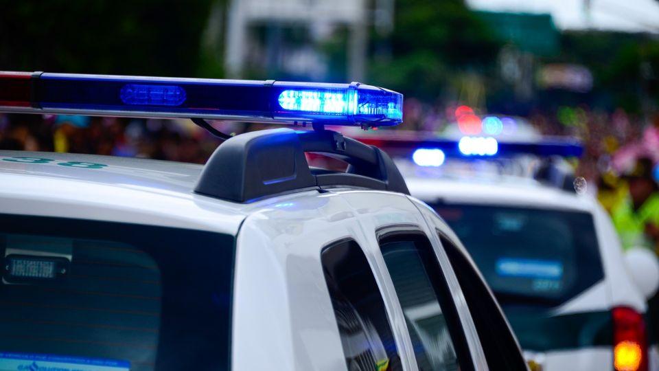 Policija Severne Makedonije zaplenila drogu vrednu oko 200.000 evra