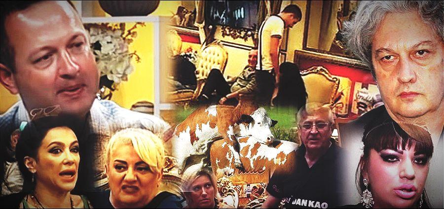 Sa Marićeve televizije poručili: Žene da se osemenjuju kao krave!