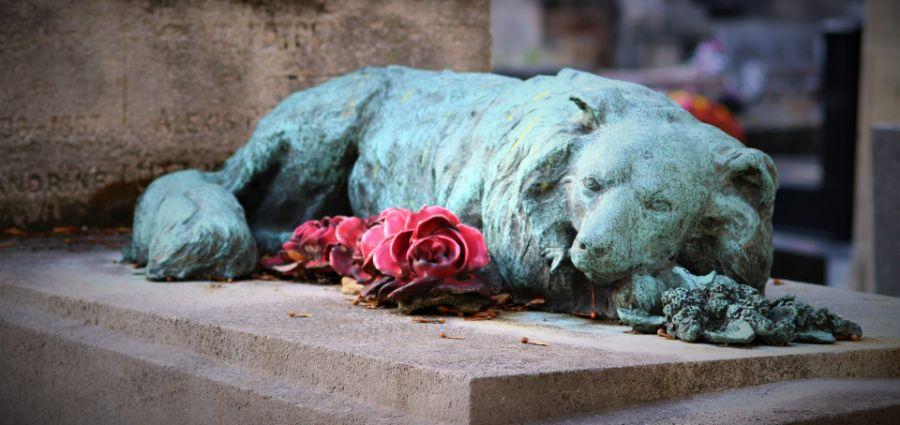 Beograd dobija groblje kućnih ljubimaca