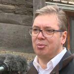 Vučić: Novi soj virusa stigao u Srbiju, nema razloga za paniku