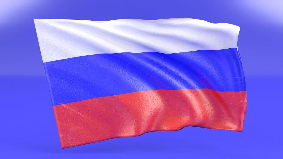 Građani Rusije biraju poslanike Dume za narednih pet godina