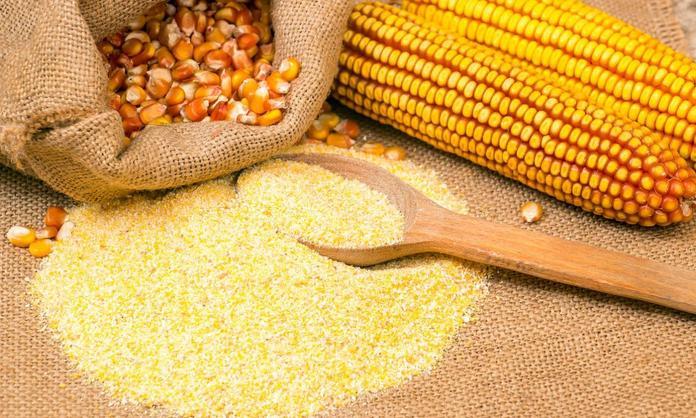 Marcha atrás en la decisión del maíz