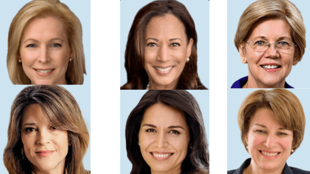 Democratic Women Candidates