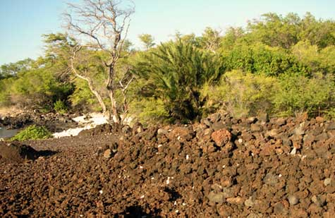Kings Highway, Maui, native ruins