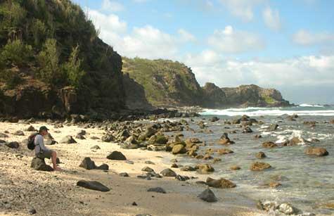 Northern Maui beach