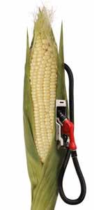 corn ethanol