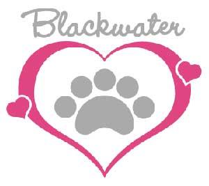 Blackwater logo contest 2