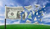 dollarflag.jpg