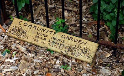 Community Garden by eschlabach