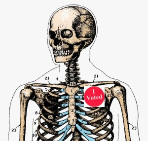 skeleton. I voted