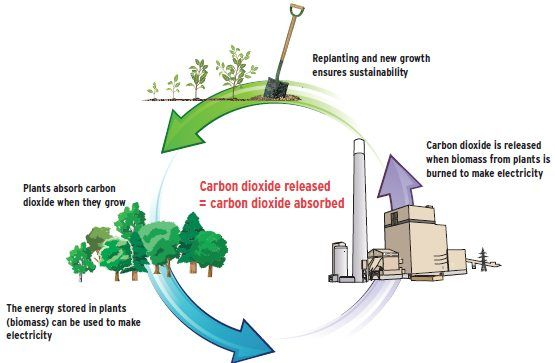 Ontario continues converting coal plants to use biomass as