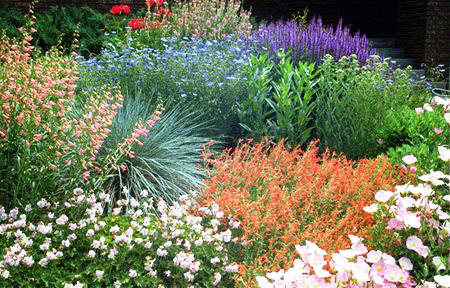 Xeriscaping. Low water usage doesn't mean barren or drab.