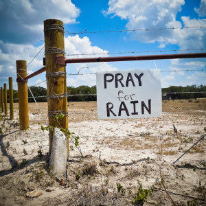 pray-for-rain-fence