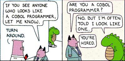 cobol programmer