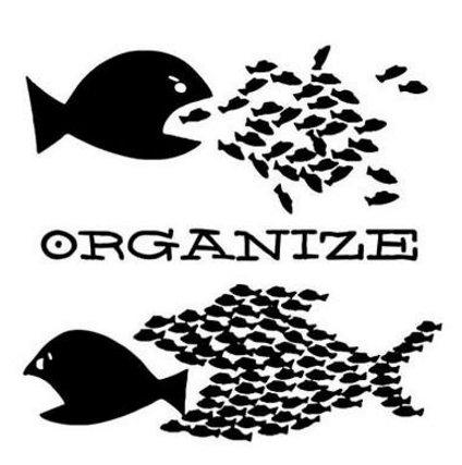 organize2