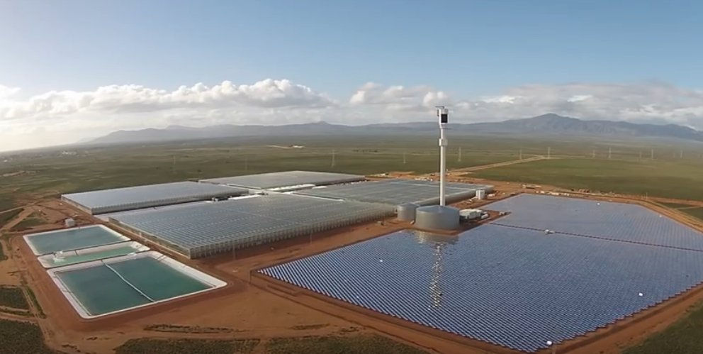 Sundrop Farms. Solar thermal. Desalination. Tomatoes.