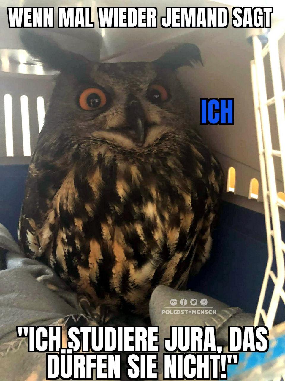 Bundeswehr Bilder Truppen Memes Lulululululu Meme Satire