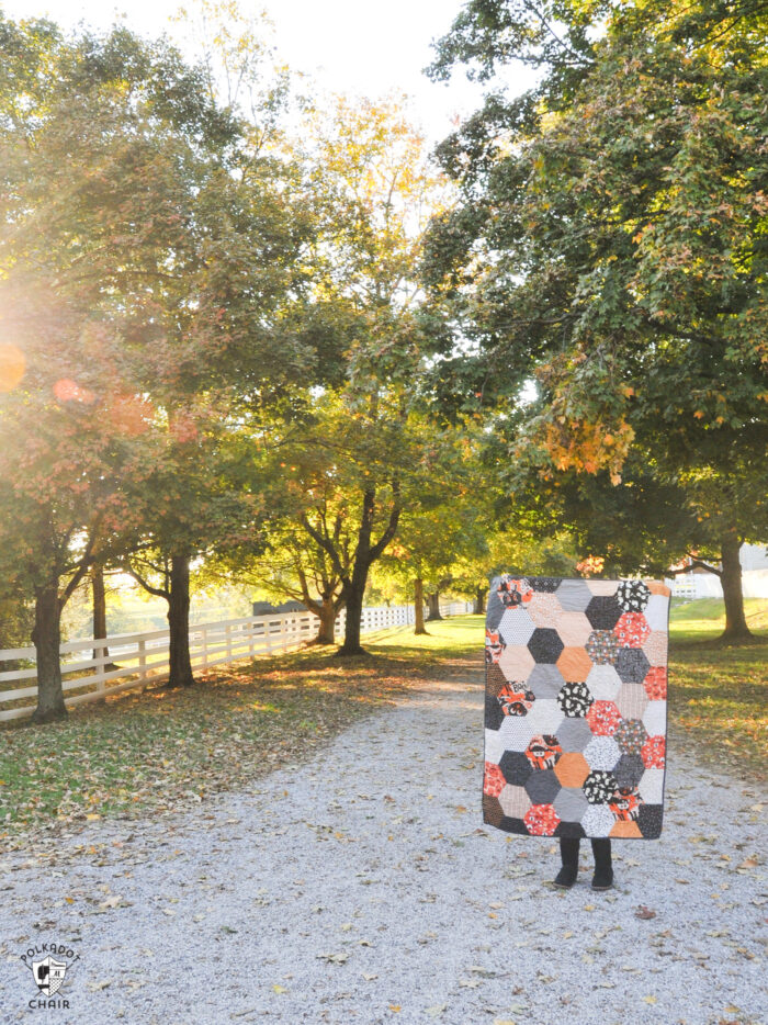 sewn hexagon quilt being held by person outdoors