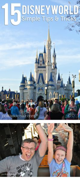 15 Simple Tips and Tricks to make your Disneyworld Trip a little bit better!
