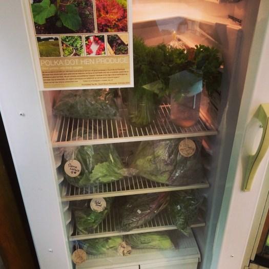 Vegetable cooler at DeJong Acres farm store Polka Dot Hen Produce