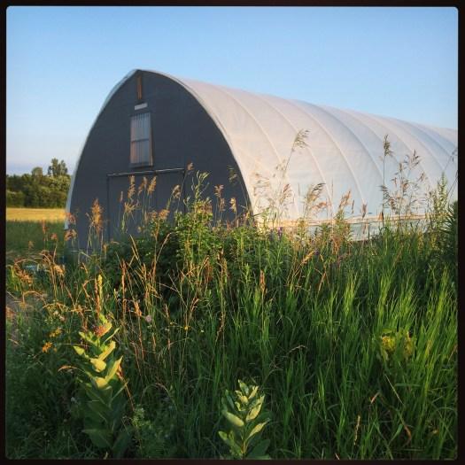 Hoop house at Polka Dot Hen Produce Bruce Peninsula