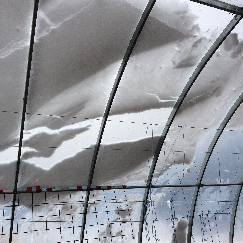 hoop house snow