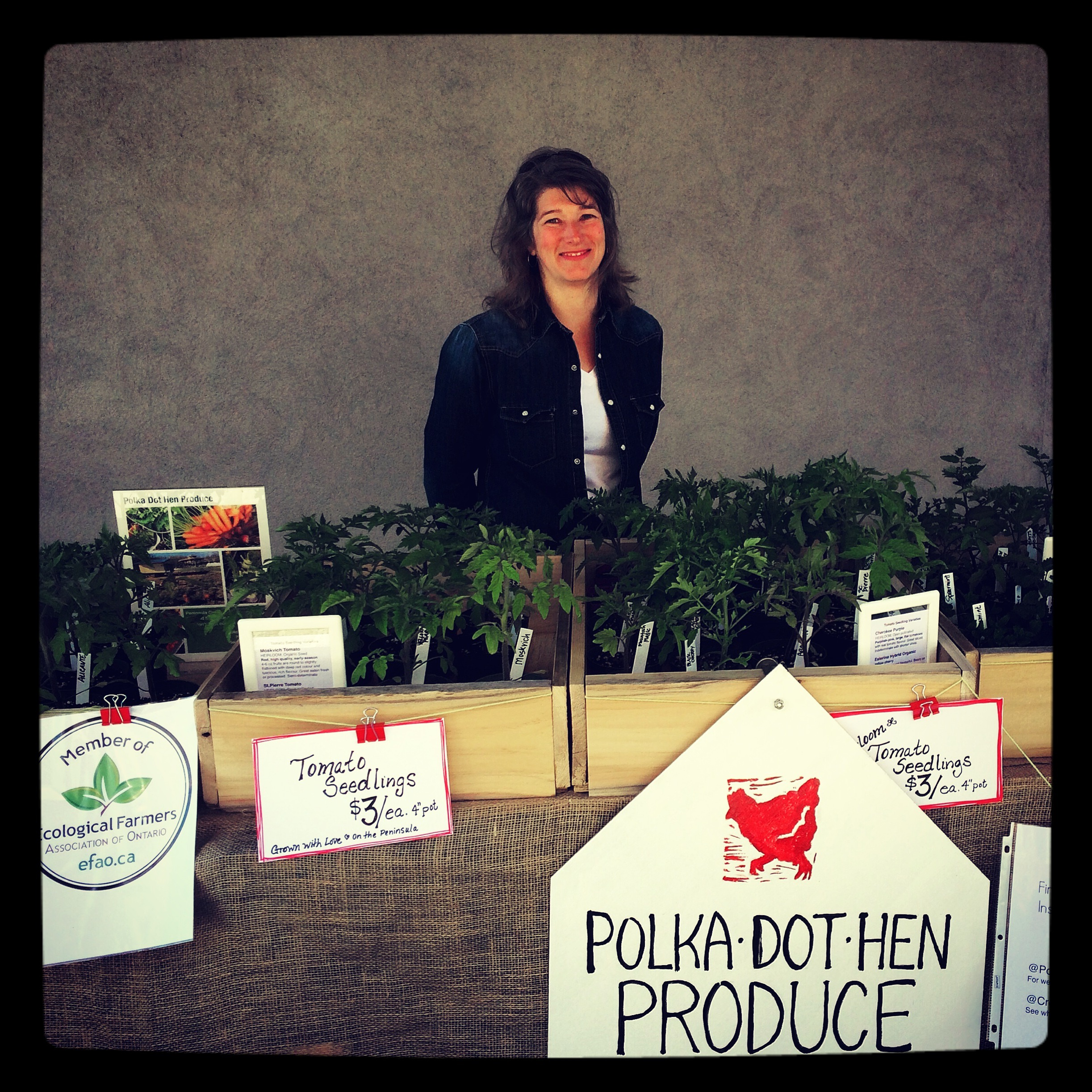 Erin Gundy selling tomato plants at the Wiarton Farmers Market May 20 2016