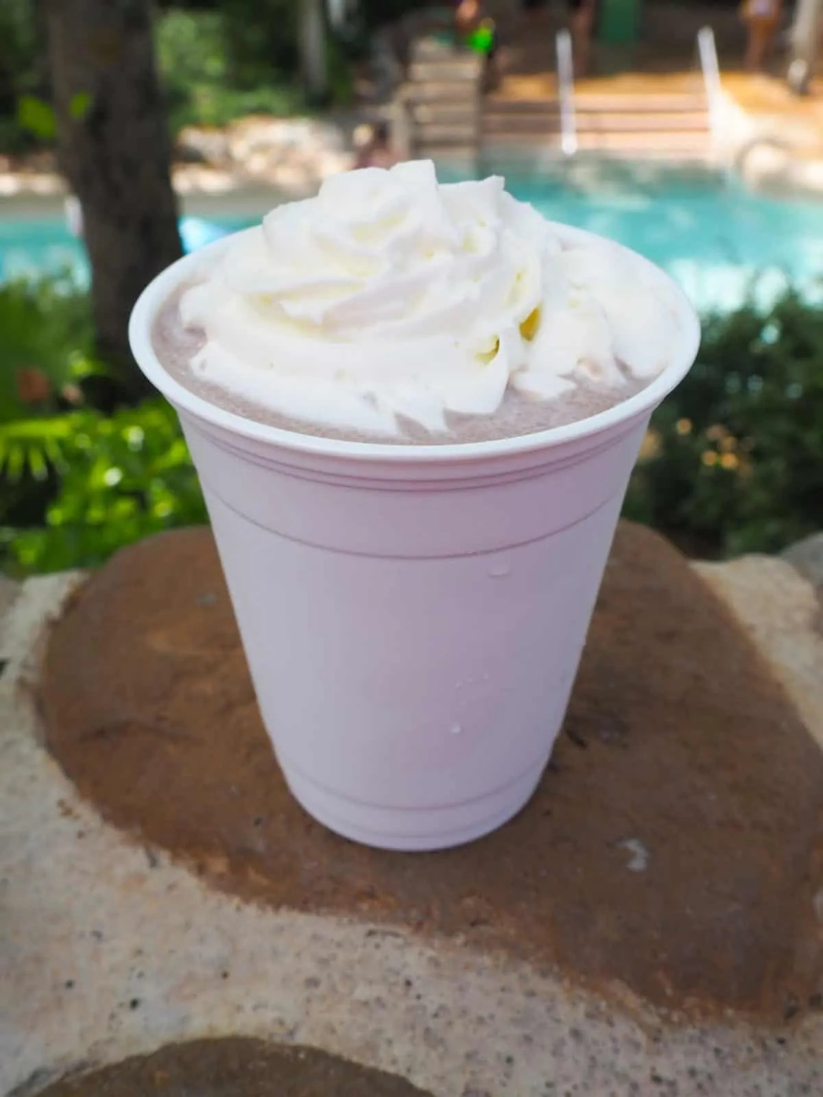 Kid-Friendly Drinks at Walt Disney World to help you Beat the Heat