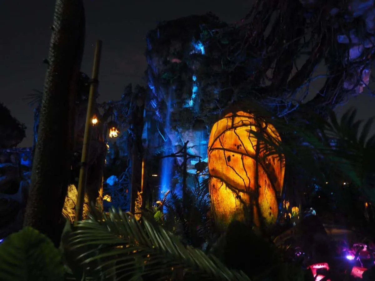 Why you need to experience Pandora at night
